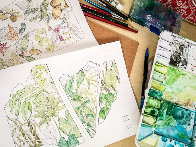 Various illustrations of botanical elements artfully arranged on a table, along with drawing and painting utensils.